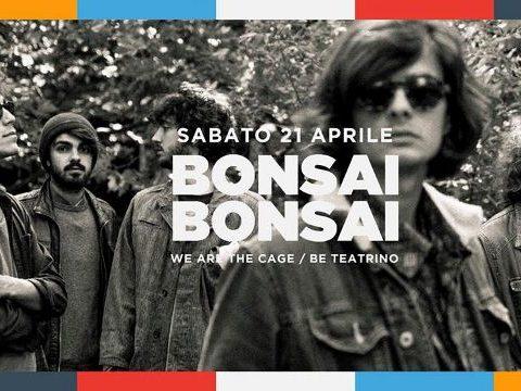 Banner Cage Bonsai Bonsai (640×360)