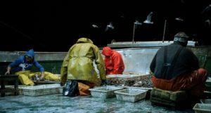 Pescatori di corpi_di Michele Pennetta_2