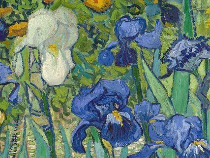 Particolare-Iris-fiori-Van-Gogh