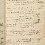 Leonardo da Vinci. Codice sul volo degli uccelli. Biblioteca reale di Torino
