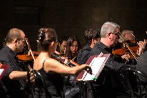 Orchestra da camera fiorentina particolare 3 pic