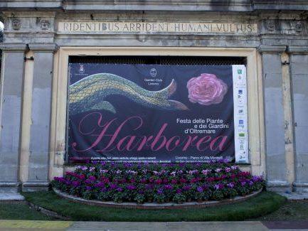 harborea teatro