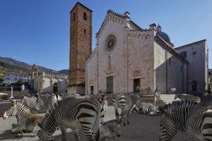 Herreman – Duomo di Pietrasanta