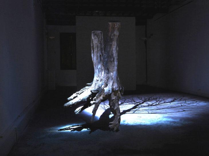 Laltra luce del giorno 2019 veduta dellinstallazione frammento di tronco di acacia con radice sabbia di fiume e proiezione video